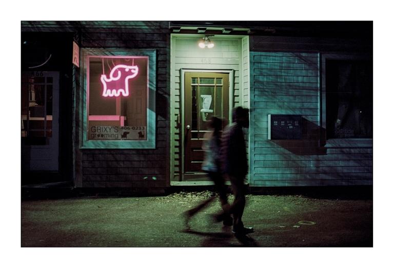 neon-dog.jpg