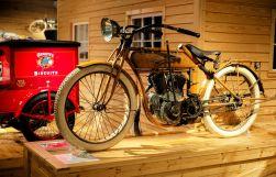 Brown Harley