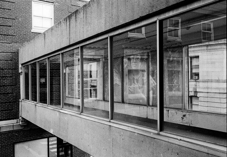 Through the Windows of the Catwalk