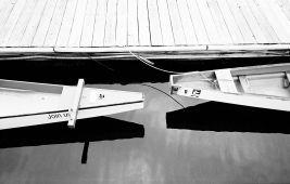 Leica M6, Kodak TriX, 35mm Summicron