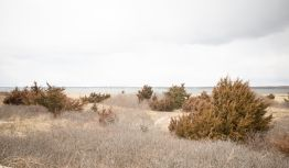 Little Narragansett Bay